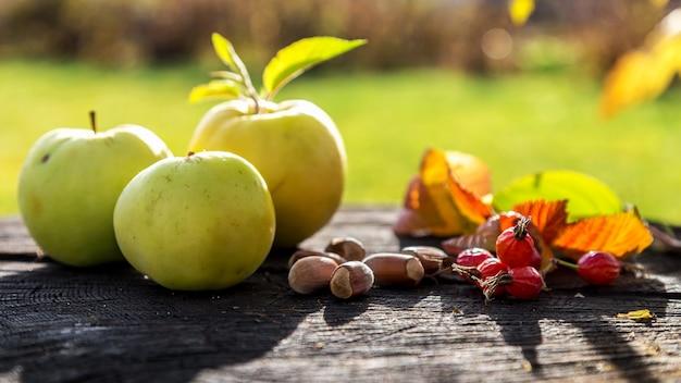 古い木の切り株に新鮮な庭のリンゴとドングリ