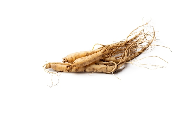 Fresh ginseng on white background