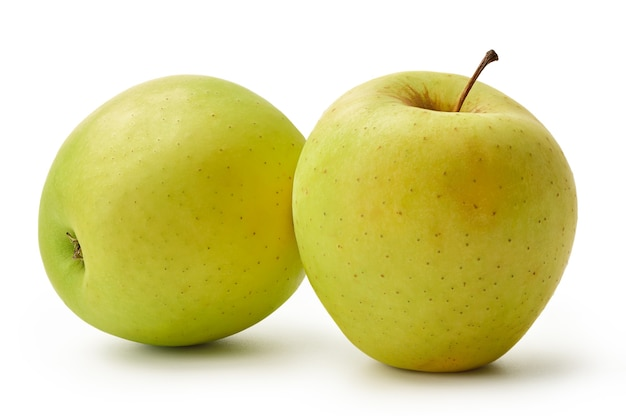 The fresh golden delicious apples are isolated on a white background harvest this year