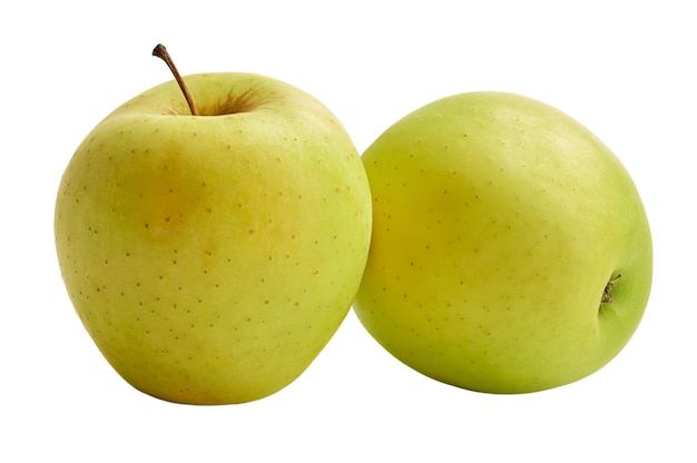 The fresh golden delicious apples are isolated on a white background. harvest this year.