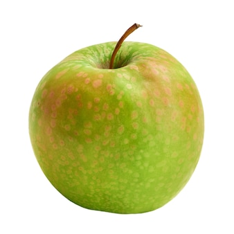 The fresh granny smith apple is isolated on a white background. harvest this year.