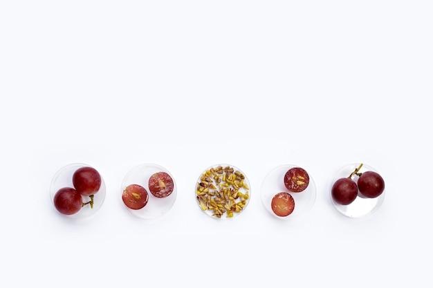 흰색 바탕에 씨앗이 있는 신선한 포도.