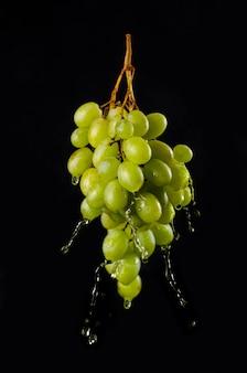 Свежий виноград с брызгами воды или сока, изолированный на черном