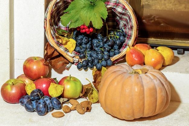 Fresh grapes, apples, plum, pears, almond and pumpkin. autumn seasonal fruits harvest