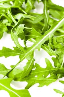 흰색 절연 신선한 녹색 arugula 힙
