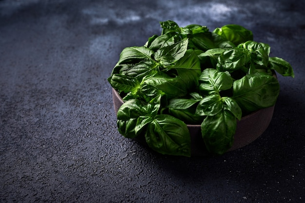 Fresh green basil in ceramic bowl on a dark background