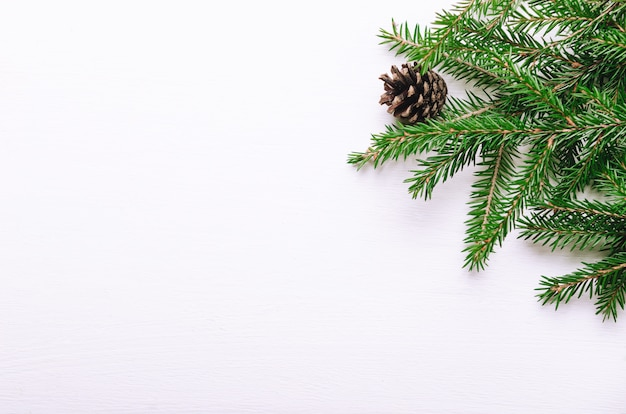 Fresh green branches of young spruce with cones on a white background.