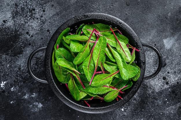 Свежие зеленые листья мангольда мангольда в дуршлаге
