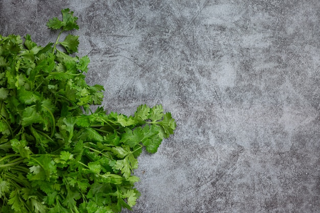 Coriandolo verde fresco sul pavimento scuro