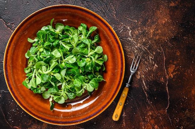 신선한 녹색 옥수수 샐러드는 소박한 접시에 남습니다. 어두운 배경입니다. 평면도. 공간을 복사합니다.