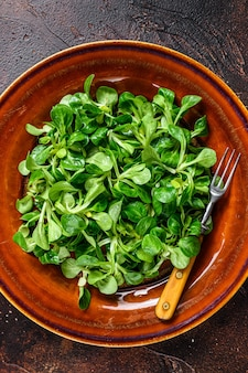 Fresh green corn salad leaves on a rustic plate