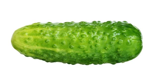 白い背景で隔離の新鮮な緑のキュウリ。 1つの丸ごと野菜。