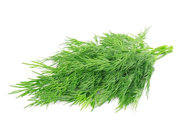 흰색 배경에 고립 된 신선한 녹색 딜