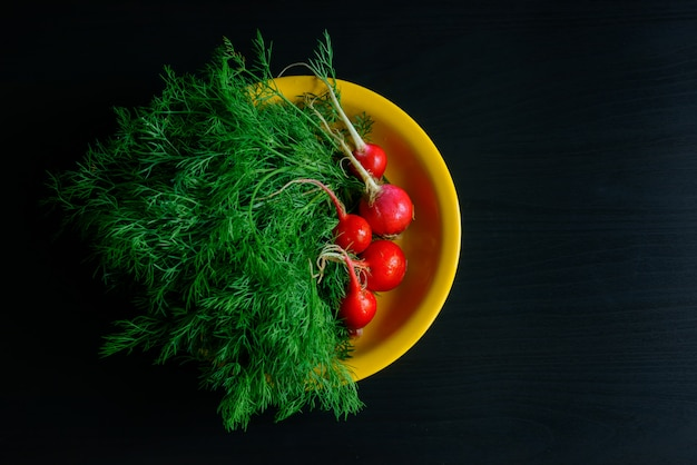Fresh green dill and radishes on yellow plate, black background, farm products, gardening.