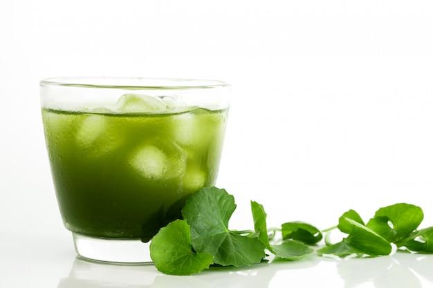 Свежий зеленый готу кола, листья центеллы азиатской и сок на белом
