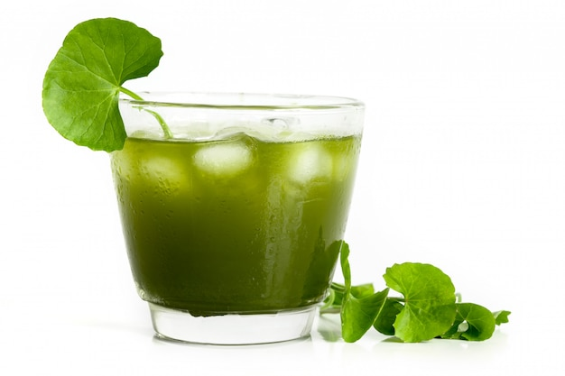 Fresh green gotu kola, centella asiatica leaf and juice on white