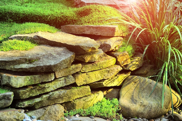 Свежий зеленый газон в солнечном свете, ландшафтный дизайн в саду