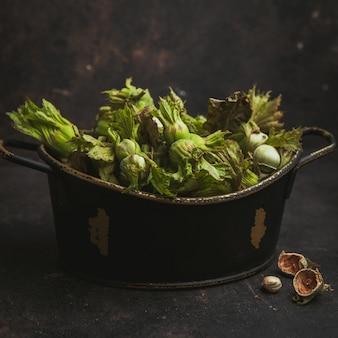 Fresh green hazelnuts in a pot on a dark brown. side view.