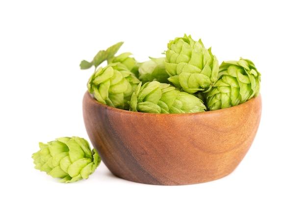 Ветвь свежих зеленых хмелей в деревянной миске, изолированной на белой предпосылке. шишки хмеля с листом. органические цветы хмеля. закройте вверх.