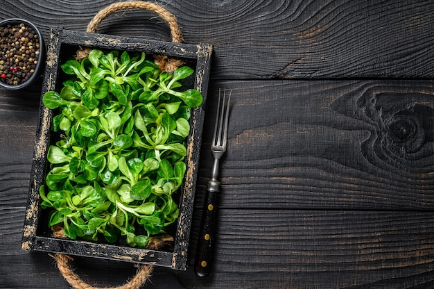 Fresh green lambs lettuce salad leaves on a wooden tray