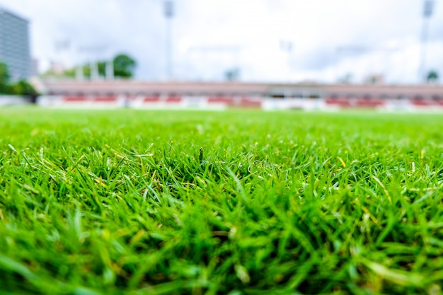 Fresh green lawns are suitable for add illustrations of products.
