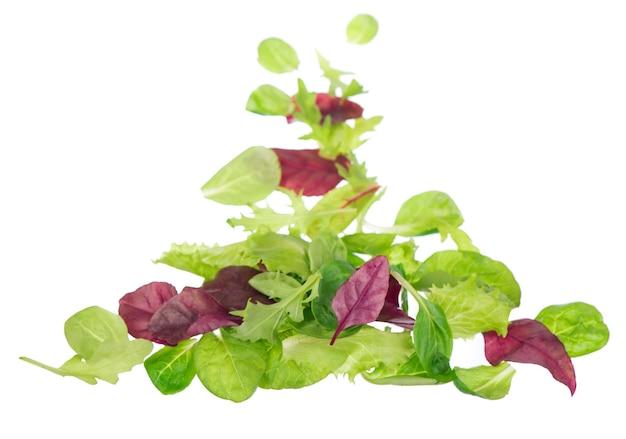 Салат из свежих зеленых листьев, изолированные на белой поверхности