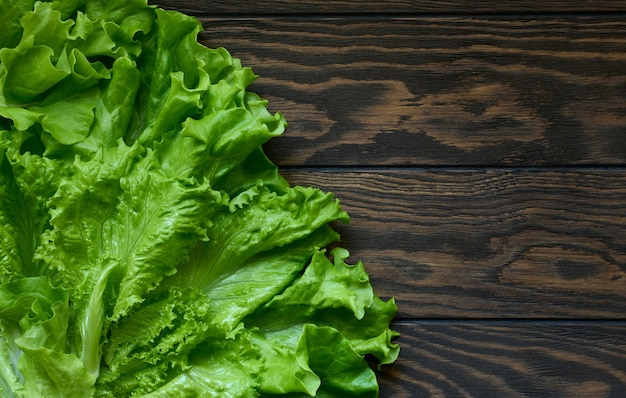 Fresh green lettuce on dark wooden background with copy space