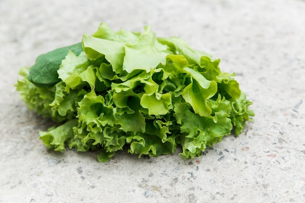Fresh green lettuce from a garden bed on the stone wall. organic food and healthy lifestyle concept