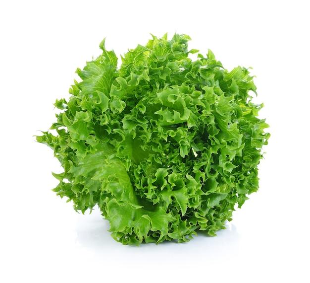 신선한 녹색 양상추 leafs에 고립 된 흰색 공간