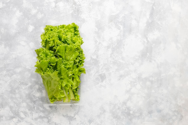 Fresh green lettuce in plastic boxes on grey concrete