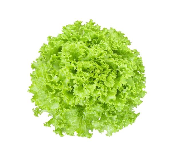 新鮮な緑のレタスのサラダは、孤立した上面図を残します
