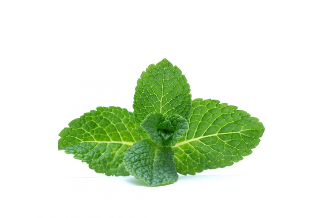 Fresh green mint leaves isolated . top view.