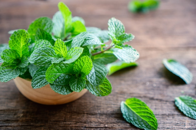 Fresh green mint leaves on wooden table closeup