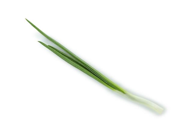 Свежий зеленый лук, изолированные на белом фоне