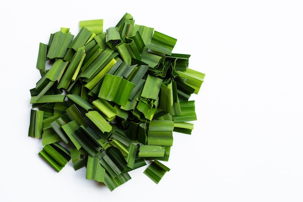 白地に新鮮な緑のパンダンの葉。コピースペース