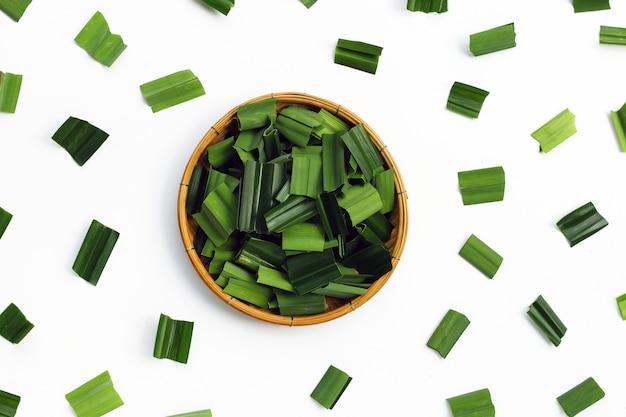 白地に新鮮な緑のパンダンの葉。上面図