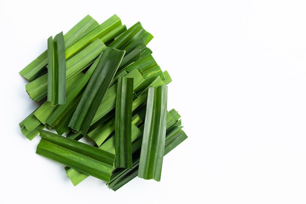 白地に新鮮な緑のパンダンの葉。