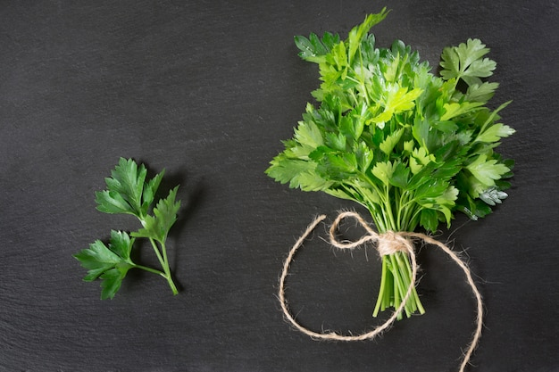Fresh green parsley in bunch on black slate.