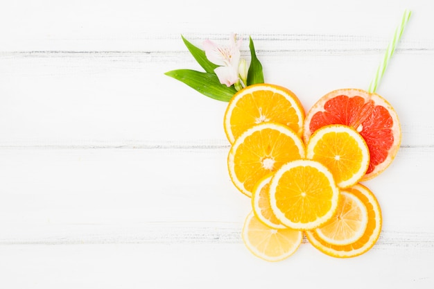 Fresh green plant leaves and slices of citruses with flower