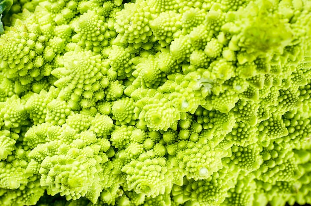 Fresh green romanesco detail close up, raw organic cabbage on dark old wooden background