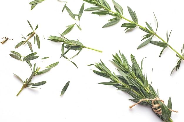 Свежее зеленое розмариновое масло изолированное на белизне, взгляд сверху. ароматическая трава.