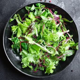 신선한 그린 샐러드 양상추는 건강한 테이블에 수분이 많은 마이크로 그린 스낵 케토 또는 팔 레오 다이어트를 혼합합니다.