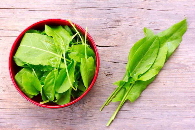 Fresh green sorrel leaves in a red bowl