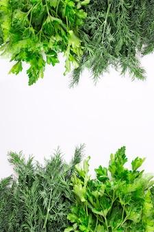 Свежие зеленые специи и листья