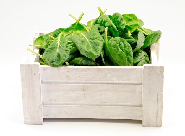 Fresh green spinachs