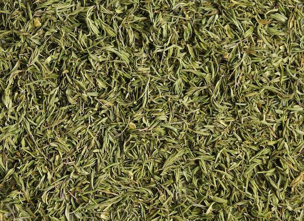 Свежий зеленый тимьян фон