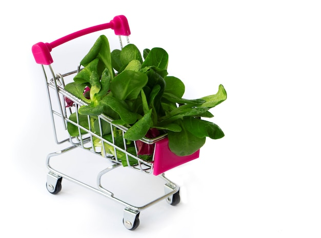 Fresh green vegetables in grocery basket mini shopping cart filled with microgreens and mashed mash salad diet concept healthy food vegan food concept shopping in the supermarket