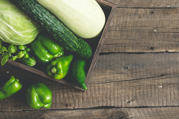 신선한 녹색 야채입니다. 양배추, 호박, 오이, 피망을 쟁반에 담습니다. 해독, 다이어트, 채식 건강 개념