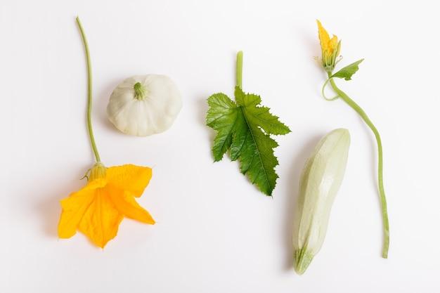 흰색 바탕에 꽃과 잎이 있는 신선한 녹색 호박. 건강한 식생활, 이유식, 채식주의, 채식주의, 날 음식의 개념. 오버 헤드 평면도, 평면 누워. 공간을 복사합니다.