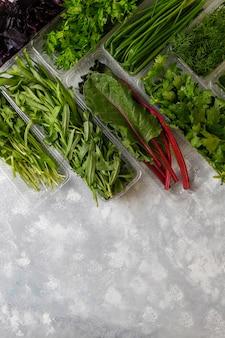 Fresh greens basil, coriander,lettuce,purple basil,mountain coriander,dill,green onion in plastic boxes on grey concrete
